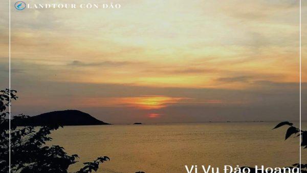 Vi vu đảo hoang tai côn đảo - Landtour Côn Đảo